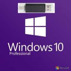 windows-10-professional en usb stick